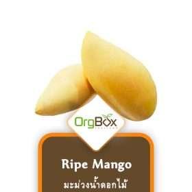 Organic Ripe Mango (มะม่วงน้ำดอกไม้) 1000 g.