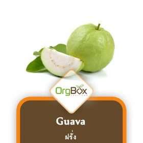 Organic Guava (ฝรั่ง) 1000 g.