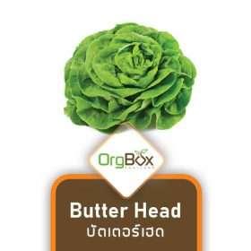Organic Butter Head (บัตเตอร์เฮด) 300 g.