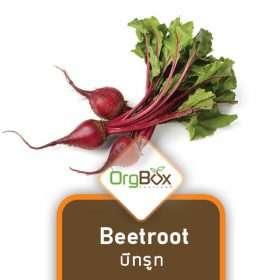 Organic Beetroot (บีทรูท) 500 g.
