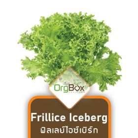 Organic Frillice Iceberg (ฟิลเลย์ไอซ์เบิร์ก) 300 g.