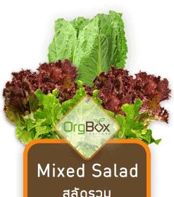 Mixed Salad (สลัดรวม) 500 g.