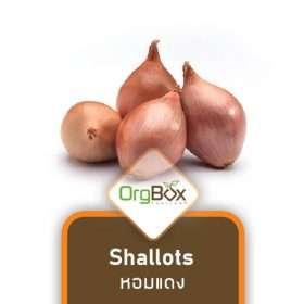 Organic Shallots (หอมแดง) 250 g.