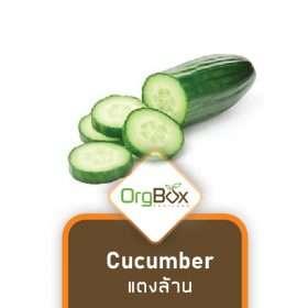 Organic Cucumber (แตงร้าน) 500 g.