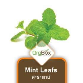 Organic Mint Leafs (สะระแหน่) 50 g.
