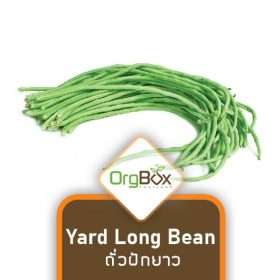 Organic Yard Long Bean (ถั่วฝักยาว) 300 g.