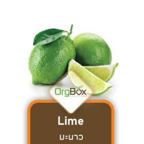 Organic Lime (มะนาว) 3 pcs.