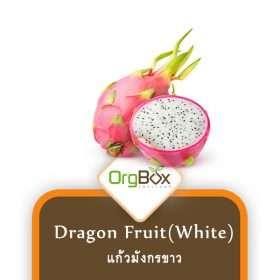 Organic White Dragon Fruit (แก้วมังกรขาว) 1,000 g.