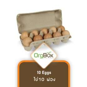 Organic Eggs (ไข่) - 10 Eggs - Medium