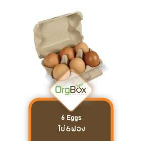 Organic Eggs (ไข่) - 6 Eggs - Small