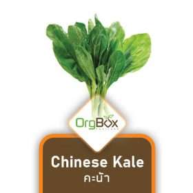 Organic Chinese Kale (คะน้า) 300 g.