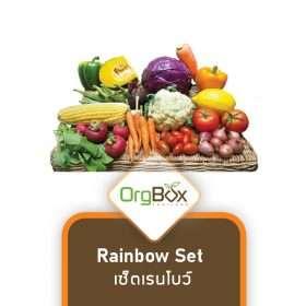 Organic Vegetables - Rainbow Set (2.5-3.5 Kg.)