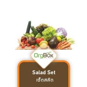 Organic Vegetables - Salad Set (2-2.5 kg)
