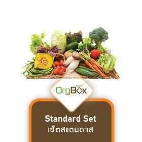 Organic Vegetables - Standard Set (2.5-3.5 kg)