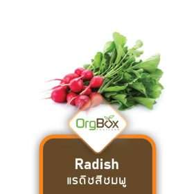 Organic Radish (แรดิชสีชมพู) 300 g.