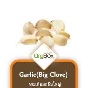 Organic Big clove Garlic (กระเทียมกลีบใหญ่) 250 g.