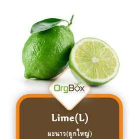 Organic Lime (L) (2 pcs.)