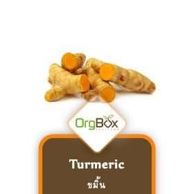 Organic Turmeric (ขมิ้น) 150 g.