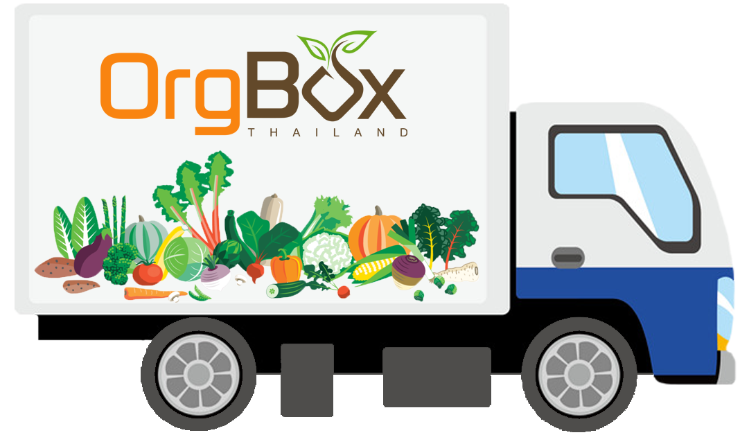 OrgBox Thailand – Fresh Organic Groceries, Weekly Delivery