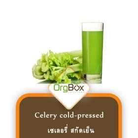 Organic Celery Cold-Pressed (น้ำเซเลอรี่สกัดเย็น) 300 ml.