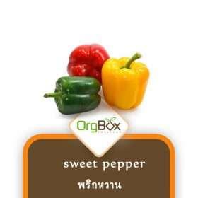 Organic Sweet Pepper (พริกหวาน) 500 g.