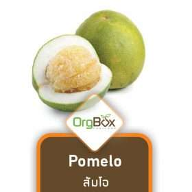 Organic Pomelo (ส้มโอ) 1 piece