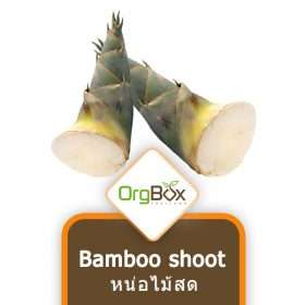 Organic Bamboo Shoot (หน่อไม้ตงสด) 1000 g.