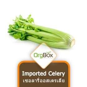 Organic Imported Celery (เซเลอรี่ออสเตรเลีย) 500g.