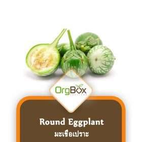 Organic Round Eggplant (มะเขือเปราะ) 300 g.