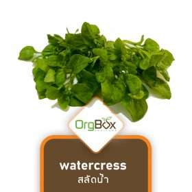 Organic Watercress (สลัดน้ำ) 200 g.