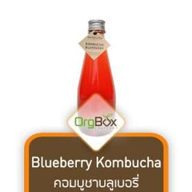 Blueberry Kombucha (คอมบูชาบลูเบอรี่) 300 ml.